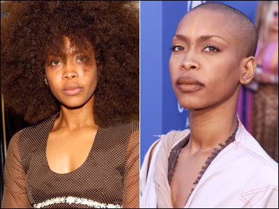 http://beautyandtheblackwoman.files.wordpress.com/2011/08/eryka-badu-5.jpg